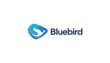 Lowongan Kerja Pengemudi di Bluebird - Jakarta